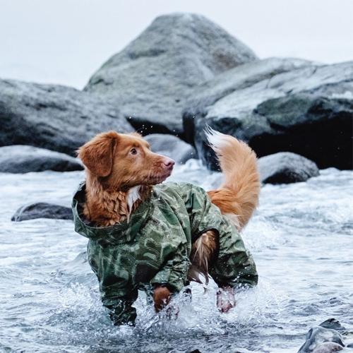 hurtta green camo dog downpour suit