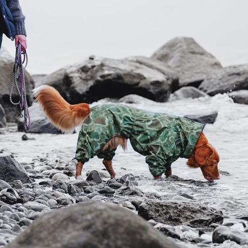 hurtta dog downpour suit green camo