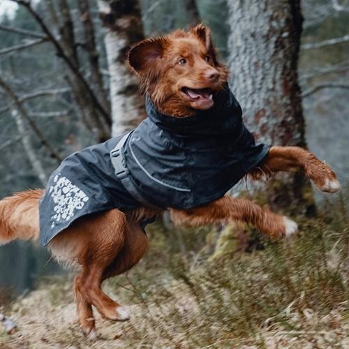 hurtta monsoon dog coat