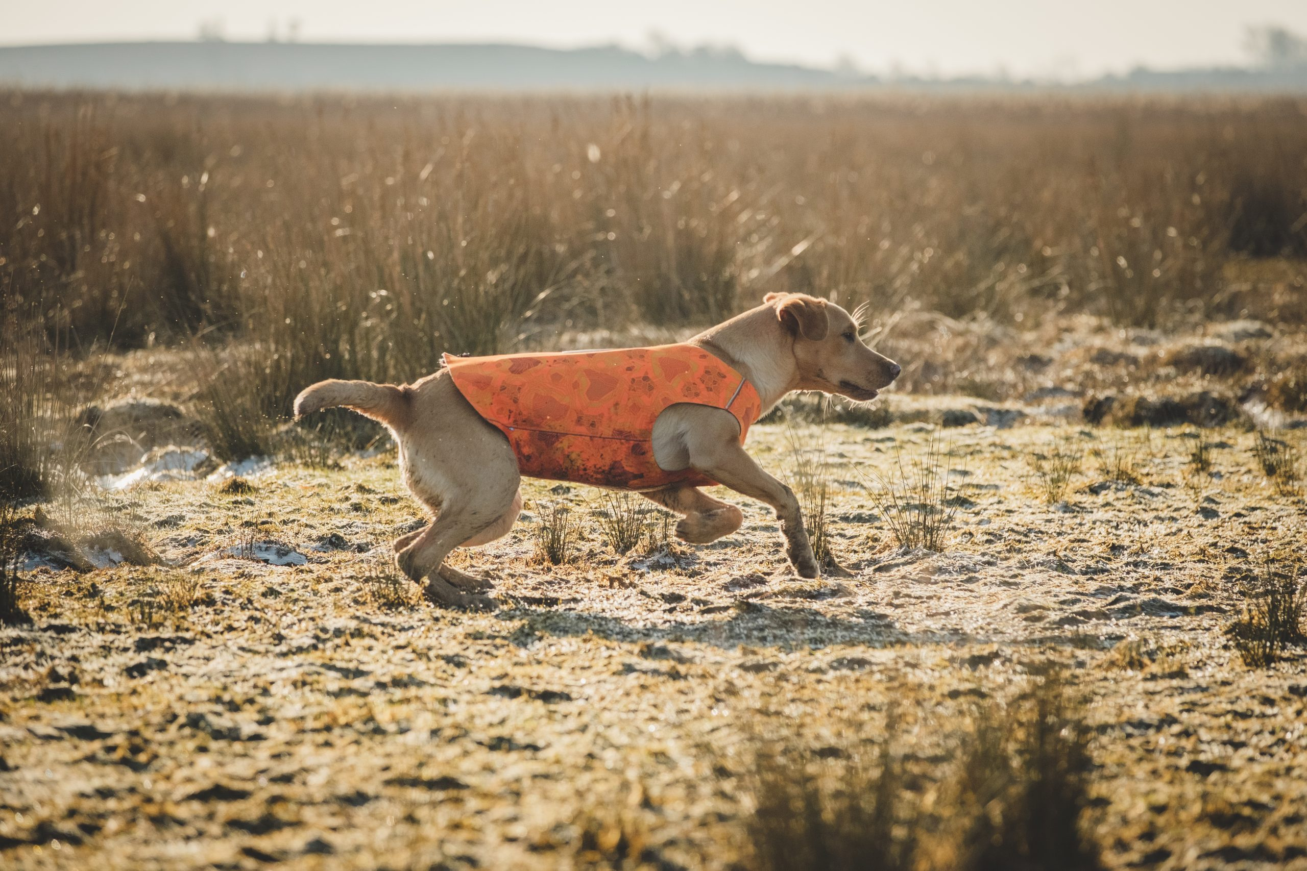 hurtta dog swimmer vest orange camo