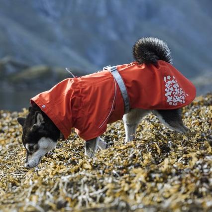 hurtta monsoon rosehip red dog coat