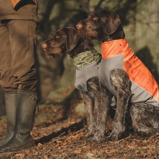hurtta worker vest dog coat jacket 2 working dogs sitting
