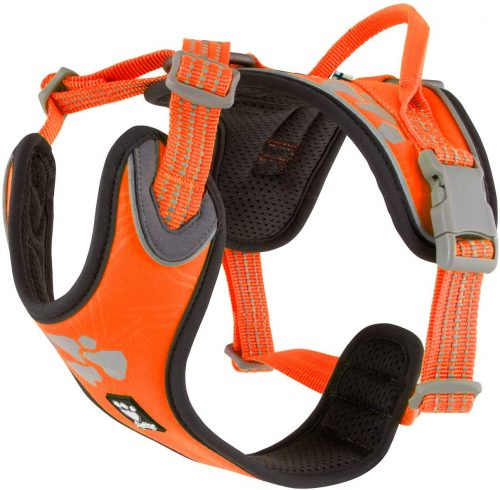 neon orange weekend warrior dog harness