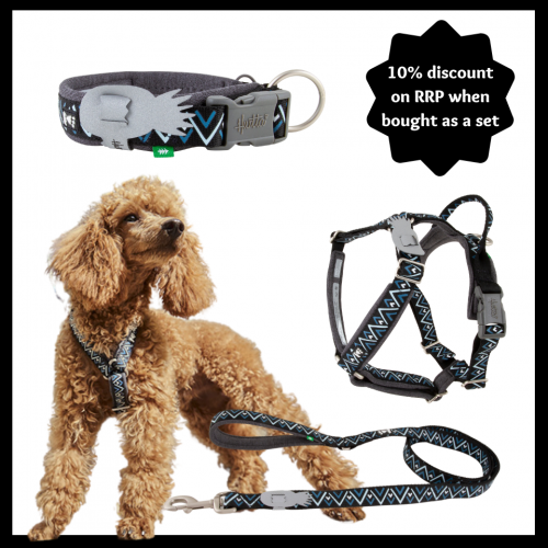 hurtta razzle dazzle harness leash collar set for growing puppies
